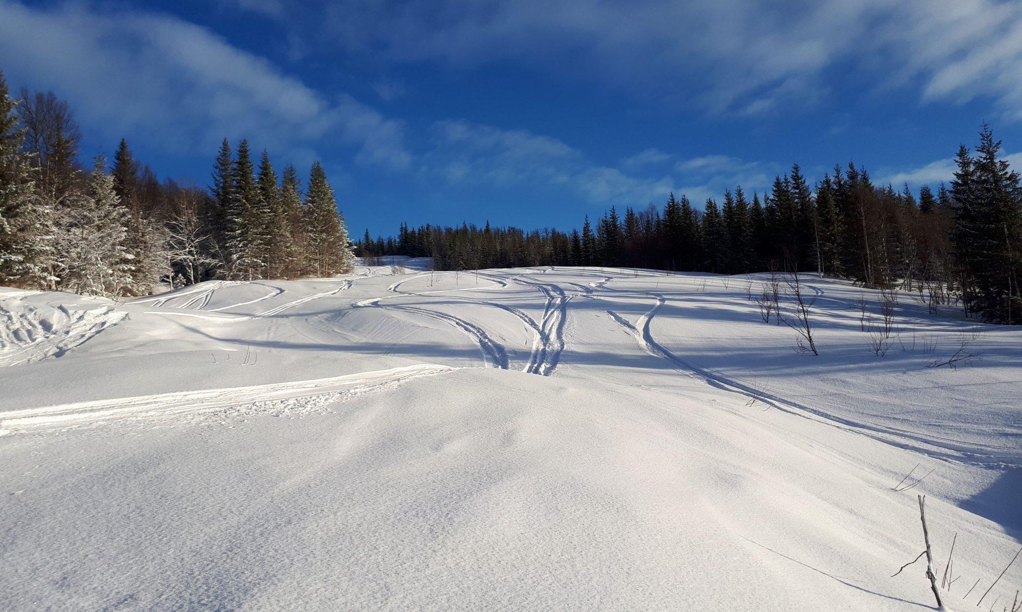 Steilia Alpinsenter